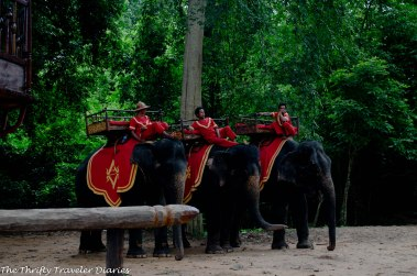 Getting ready for my first elephant ride