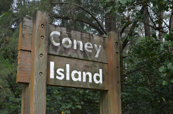 Coney Island is otherworldly and charming